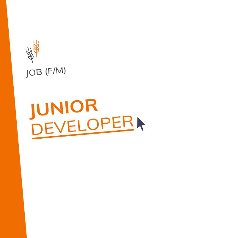 Junior Developer (m/f)